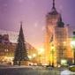Warszawa zamek - plakat premium wymiar do wyboru: 50x70 cm