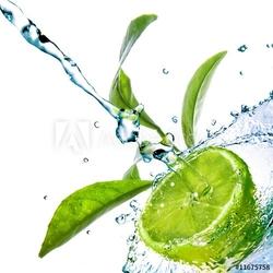 Plakat na papierze fotorealistycznym krople wody na wapno z zielonych liści na białym tle