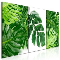 Obraz - liście palmy 3-częściowy