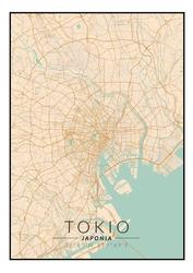 Tokio mapa kolorowa - plakat wymiar do wyboru: 40x50 cm