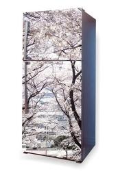 Foto naklejka na lodówkę drzewa p38