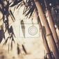 Obraz stonowanych obraz bambusa roślin