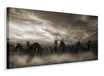 Wild stampede - obraz na płótnie