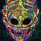Psychoskulls, xenomorph, alien obcy - plakat wymiar do wyboru: 21x29,7 cm