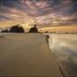 Wydma na plaży - plakat wymiar do wyboru: 60x40 cm