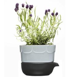 Doniczka do ziół z podstawką lawenda Herbs  Spices Sagaform