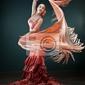 Obraz flamenco