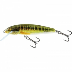 Wobler Salmo MINNOW Holo Real 5cm3g floating