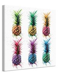 Pineapple rainbow - obraz na płótnie