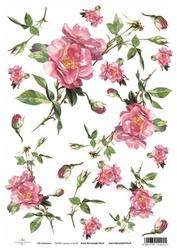Papier ryżowy ITD A4 R428 róże