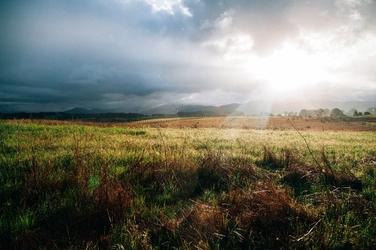 Fototapeta słońce oświecające łąkę fp 1552