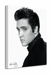 Elvis Portrait - Obraz na płótnie