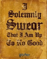 Harry potter i solomnly swear - plakat