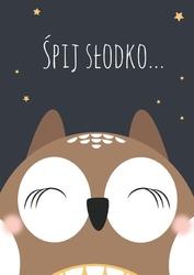 Śpiąca sowa na ciemnym tle - plakat wymiar do wyboru: 50x70 cm