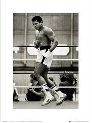 Muhammad Ali Float - plakat premium