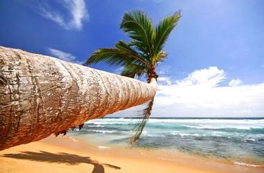 Tropikalna plaża - fototapeta