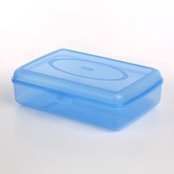 Pojemnik hermetyczny do przechowywania żywności  owoców  śniadania tontarelli fill box 4 l niebieski