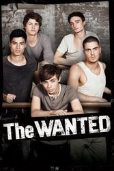 The wanted - plakat na ścianę