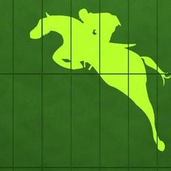 jeździec 1158 szablon malarski