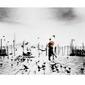 Venice - reprodukcja