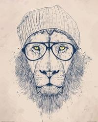 Cool lion - reprodukcja