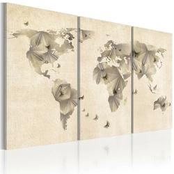 Obraz - atlas motyli - tryptyk