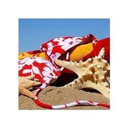 Rozgwiazda w piasku iii - reprodukcja