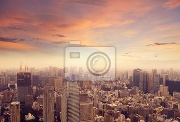 Fototapeta tokyo skyline