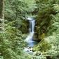 Wiosenny wodospad - fototapeta