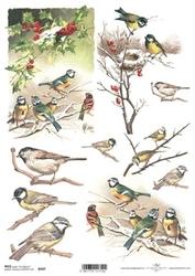 Papier ryżowy ITD A4 R597 ptaki