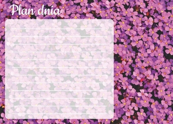 Tablica magnetyczna suchościeralna plan dnia kwiatki 360
