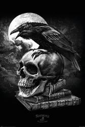 Alchemy poes raven - plakat