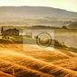 Fototapeta zobacz typowy krajobraz toskanii