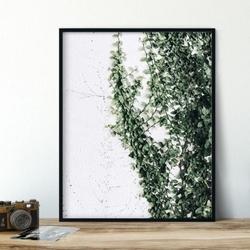 Plakat w ramie - greenwall , wymiary - 40cm x 50cm, ramka - czarna