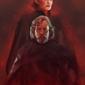 Star wars gwiezdne wojny – ostatni jedi – bohaterowie - plakat premium wymiar do wyboru: 20x30 cm