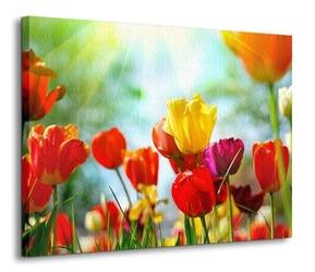 Wiosenne kwiaty - obraz na płótnie