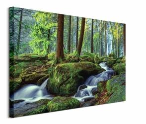 Leśny Wodospad - obraz na płótnie